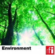 pochette-environnement-HD-EN_CMJN.jpg