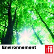 pochette-environnement-HD_CMJN.jpg