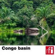 pochette_bassin-congo-EN_HD.jpg