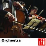 RFI_028 Orchestra.jpg