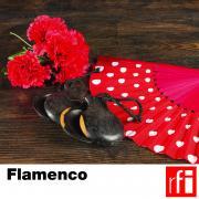 RFI_040 Flamenco_en.jpg