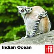 RFI_044 Indian Ocean_en.jpg