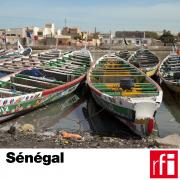 pochette-senegal_HD.jpg